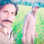 zulqarnain khan Profile Picture