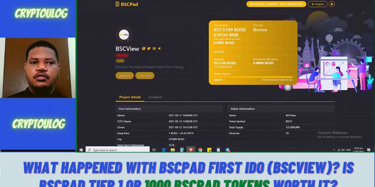 What Happened With BSCPAD First IDO (BSCVIEW)? Is BSCPAD Tier 1 Or 1000 BSCPAD Tokens Worth It?