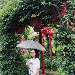 Sang Sang Profile Picture