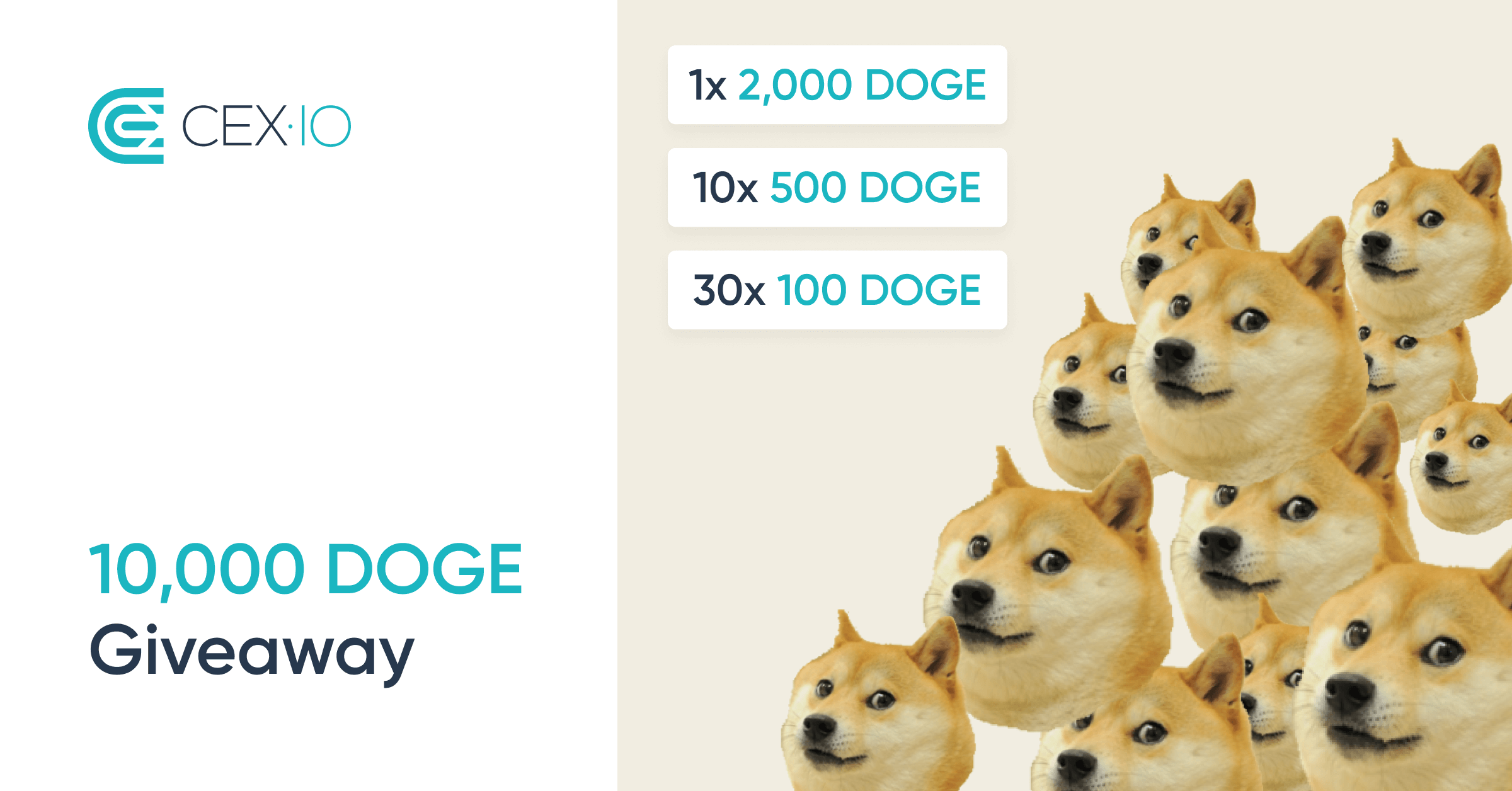 10,000 DOGE GIVEAWAY